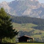 Mont d'Arbois